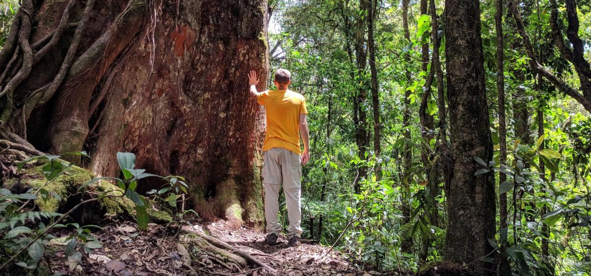 Environmental Encounters